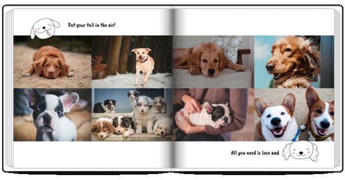 Fotoksiążka z psem