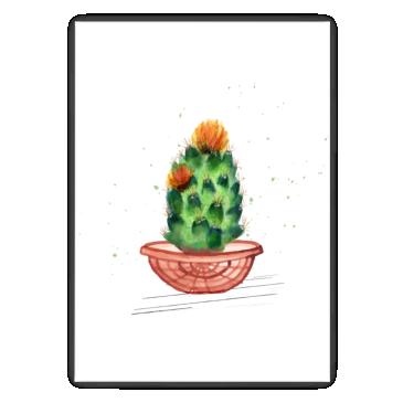 Malowany kaktus