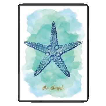 Rozgwiazda blue